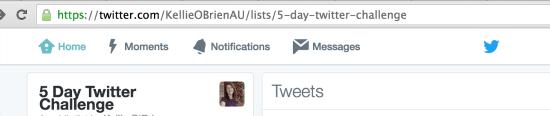 Share Twitter List