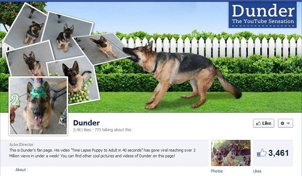 Dunder Facebook