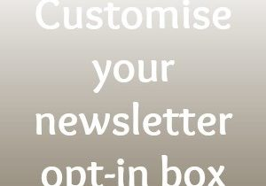 Newsletter opt in box